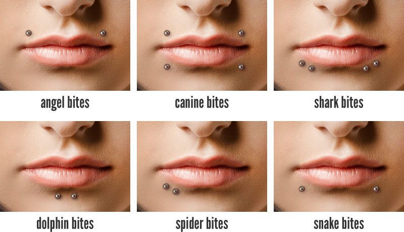 Lip piercings hollywood body jewelry blog for Types of body jewelry rings